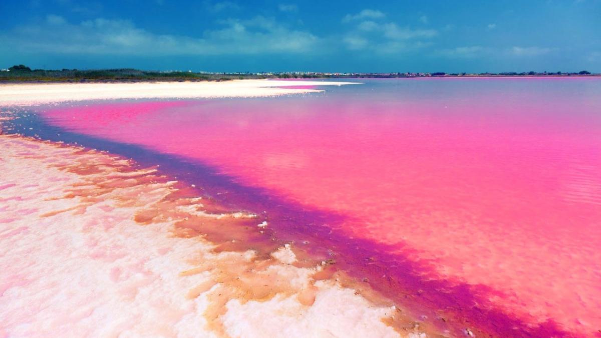lago rosa il rosa domina