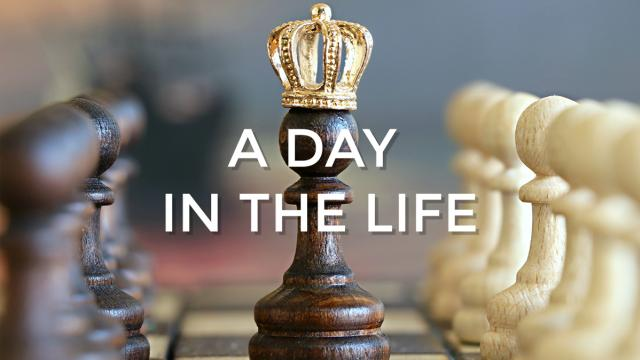 A day in the Life - canale gpreport